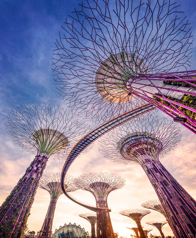 Gardens by the bay-Supertrees