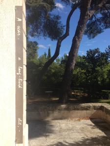 D Moore K Davis_Scar_poem+tree