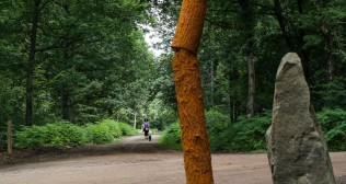 Tuesday 5th July 2016 14:00 Forest of Dean Sculpture Trail. Installation of Henry Castle's new work to the trail.
