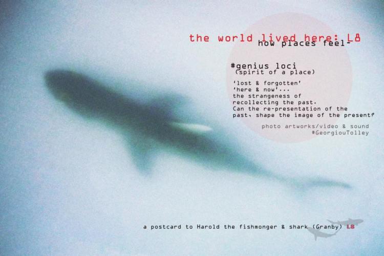 a postcard to Harold the fishmonger & shark, L8